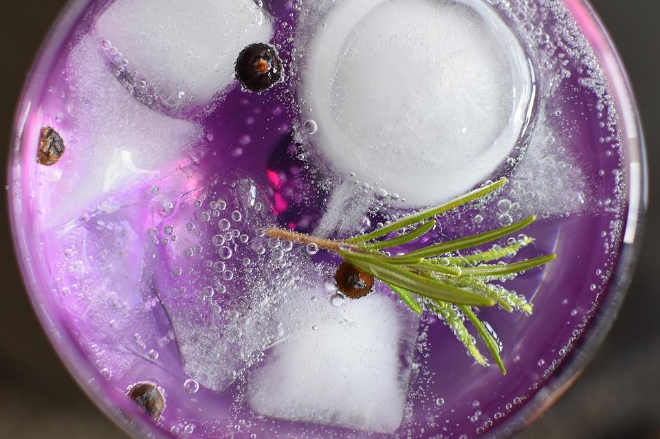 Top 5 ginrecepten