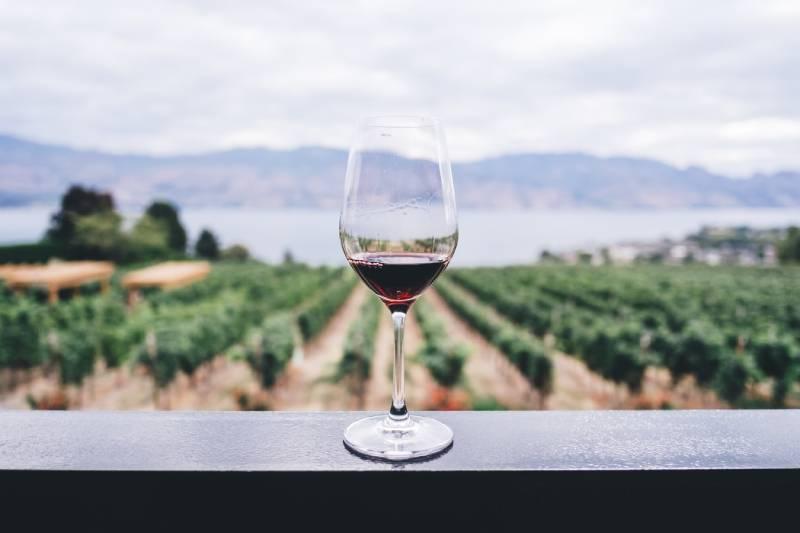 Wijnen wijnen wijnen verzekerd met deze recepten
